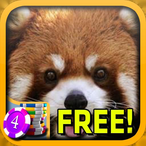 3D Red Panda Slots - Free 紙牌 App LOGO-APP試玩