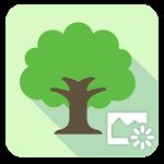 ASUS LiveScenery livewallpaper v1.1.0.141118