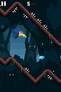 Disturbed-Bird 7