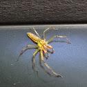 Magnolia Green Jumper - male