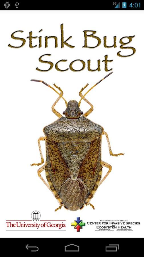 Stink Bug Scout- screenshot