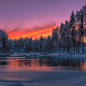 Narnia-land by Ewa Nilsson - Landscapes Sunsets & Sunrises ( water, sweden, winter, tree, lapland, sunset, reflections, Earth, Light, Landscapes, Views,  )
