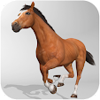 Horse Simul.. file APK for Gaming PC/PS3/PS4 Smart TV