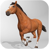 Horse Simulator 3D Android APK Download Free By Zuuks Games