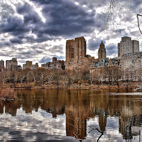 by Jose Figueiredo - City,  Street & Park  City Parks ( park, buildings, new york city,  )