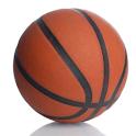 Basketball Scorebook logo