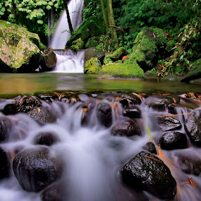 The natural beauty by Agus Eka Kurniawan - Landscapes Waterscapes ( bali, nature, green, waterfall, stone, forest, flow )
