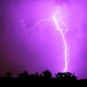 Summer Storm by Sean O'Brien - Landscapes Weather ( lightning, bolt, thunderstorm, electric, summer, creativity, lighting, art, artistic, purple, mood factory, lights, color, fun,  )