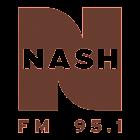NASH FM 95.1 icon