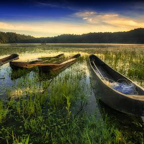Boats in Tamblingan by Bayu Adnyana - Transportation Boats ( bali, traditional boat, lake, traditional, boat, tamblingan )