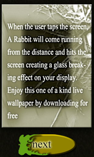 Crack Screen by Rabbit