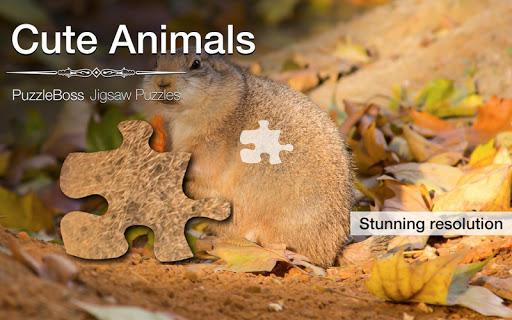 Cute Animal Jigsaw Puzzles