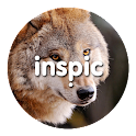 Inspic Wolfs Wallpapers HD icon