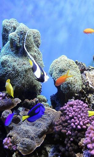 Underwater World LWP