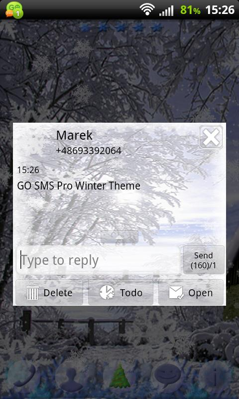 GO SMS Pro Winter Theme - screenshot