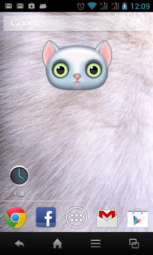 【免費個人化App】Zoo Live Wallpaper - Cat-APP點子