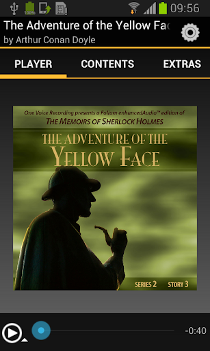 Adventure of the Yellow Face