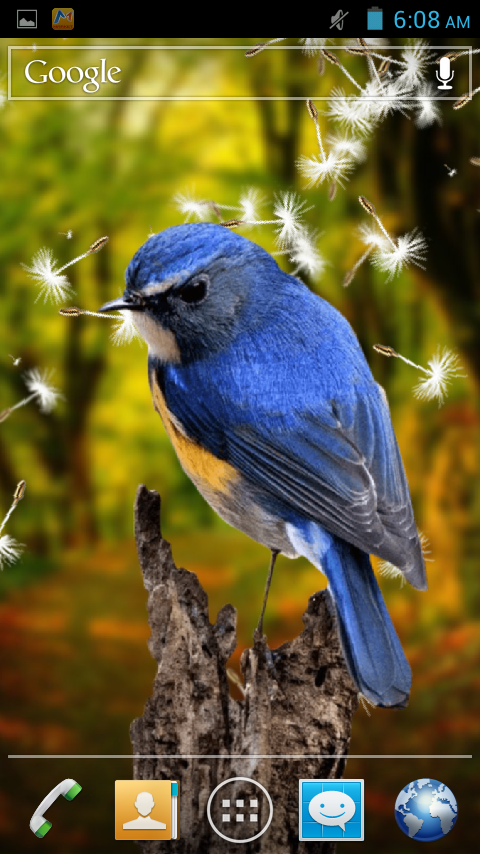 3d birds live wallpaper android apps on google play - Best wallpapers for s5 ...