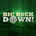 BigBuckDown! icon