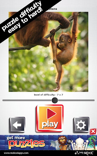 玩免費解謎APP|下載モンキーパズル - 無料ゲーム app不用錢|硬是要APP