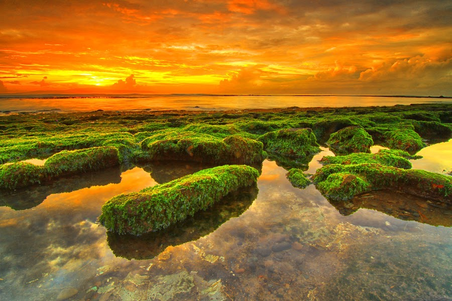 hello yellow by I Made  Sukarnawan - Landscapes Cloud Formations ( sunset, sunrise, yellow, beach, landscape, rocks )