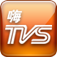 HiTVS logo