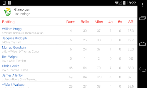ECB Cricket screenshot 2