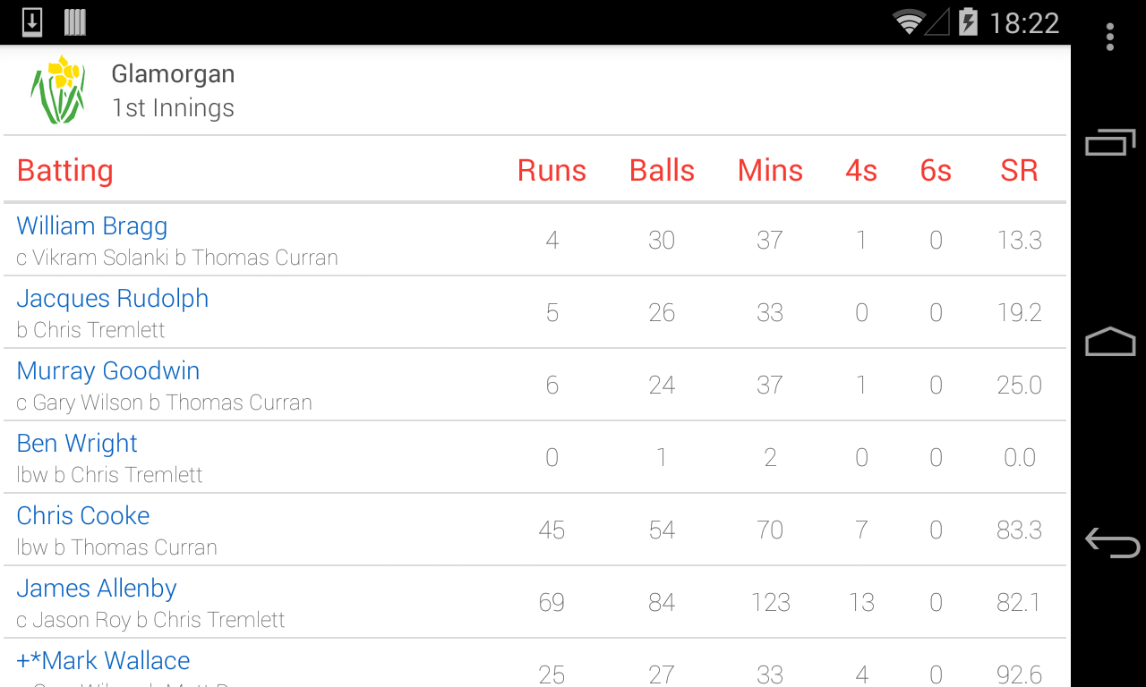 ECB Cricket- screenshot