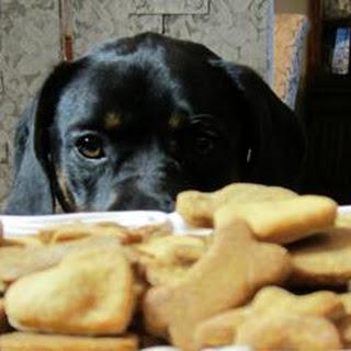 Sparky's Doggie Treats