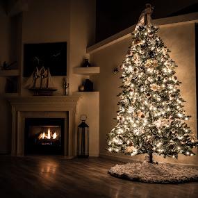 Grace's Tree by Rick Shick - Public Holidays Christmas