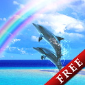 Dolphin Rainbow Trial