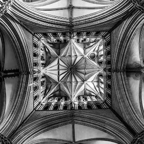 Mesmerizing  by Lauren Carroll - Buildings & Architecture Architectural Detail ( uk, lincoln, church, ceiling, worship,  )