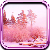 Pink Winter Landscape LWP