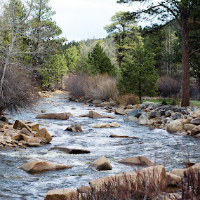 Big Thompson by Derrick Leiting - Landscapes Waterscapes ( water, mountains, park, serene, estes, creek, colorado, 50mm, trees, beauty, nikon, river )