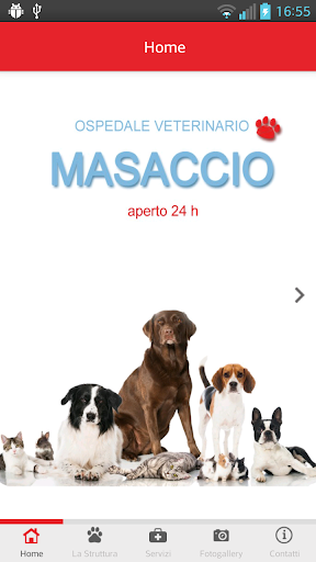 Ospedale Veterinario Masaccio