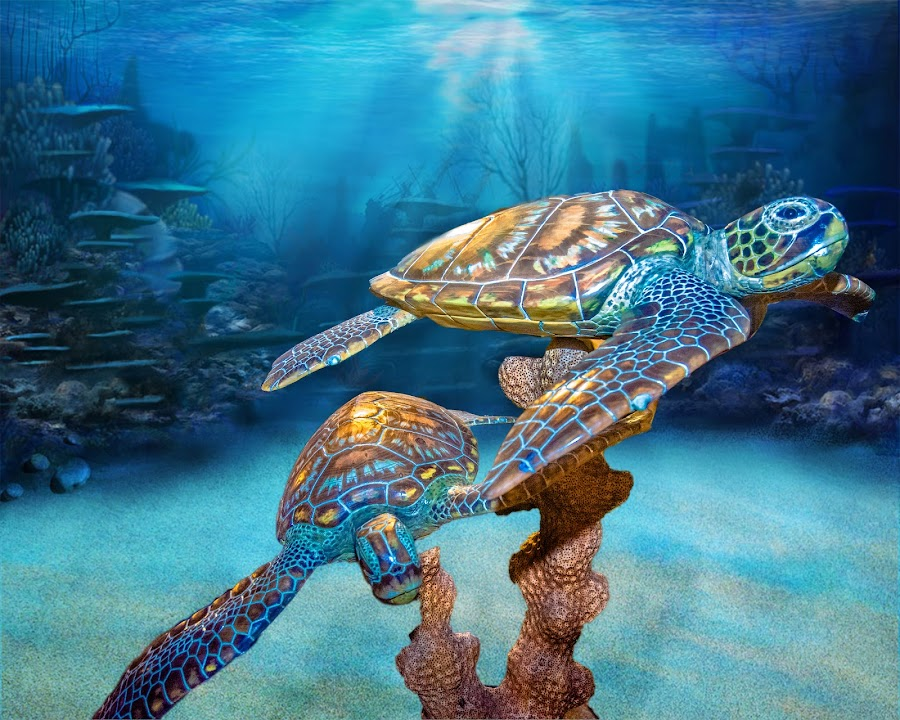 Turtles at sea by Jon Cody - Artistic Objects Other Objects ( altered, underwater, sea  turtles, carvings, art,  )