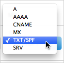 TXT selected on Type drop-down list
