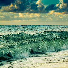 Wave by Lee Miko - Landscapes Waterscapes