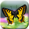 Butterflies Catch Craze 3D 1.0 icon