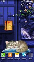 Screenshot of Sleeping Cat Live Wallpaper