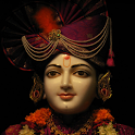 Jay Swaminarayan Live Wallpape icon