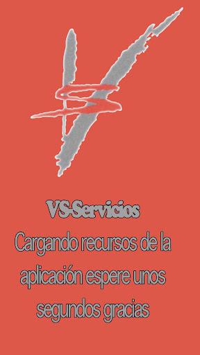 VS Servicios Empresariales