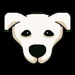 Snoopy Wong