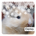 Bunny Jigsaw Puzzles Demo icon