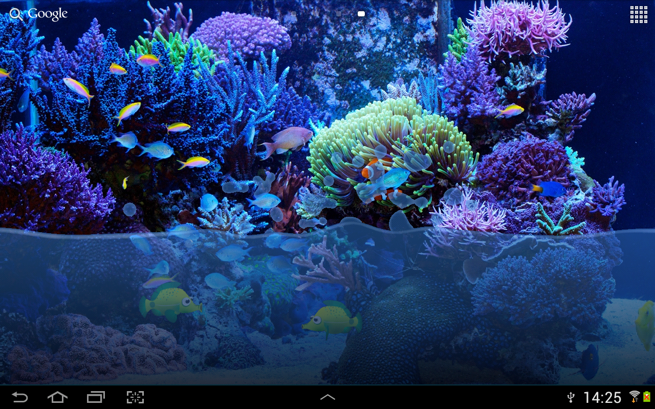 Fish tank live wallpaper android apps on google play for Live fish tank