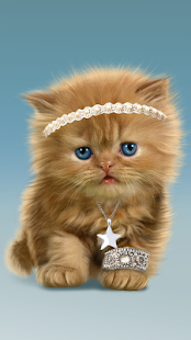 Baby Cat, Cute Live Wallpaper- screenshot thumbnail
