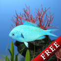Chromis viridis Trial icon