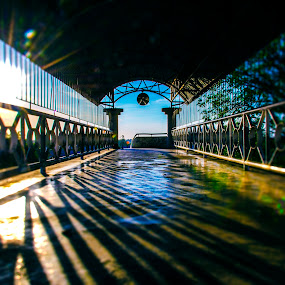 the journey by Andrian Andrew - Novices Only Street & Candid ( bridge, landscape, sun )
