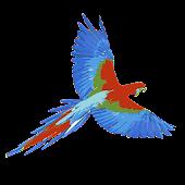 Parrot for Dashclock
