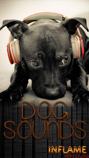犬サウンズ